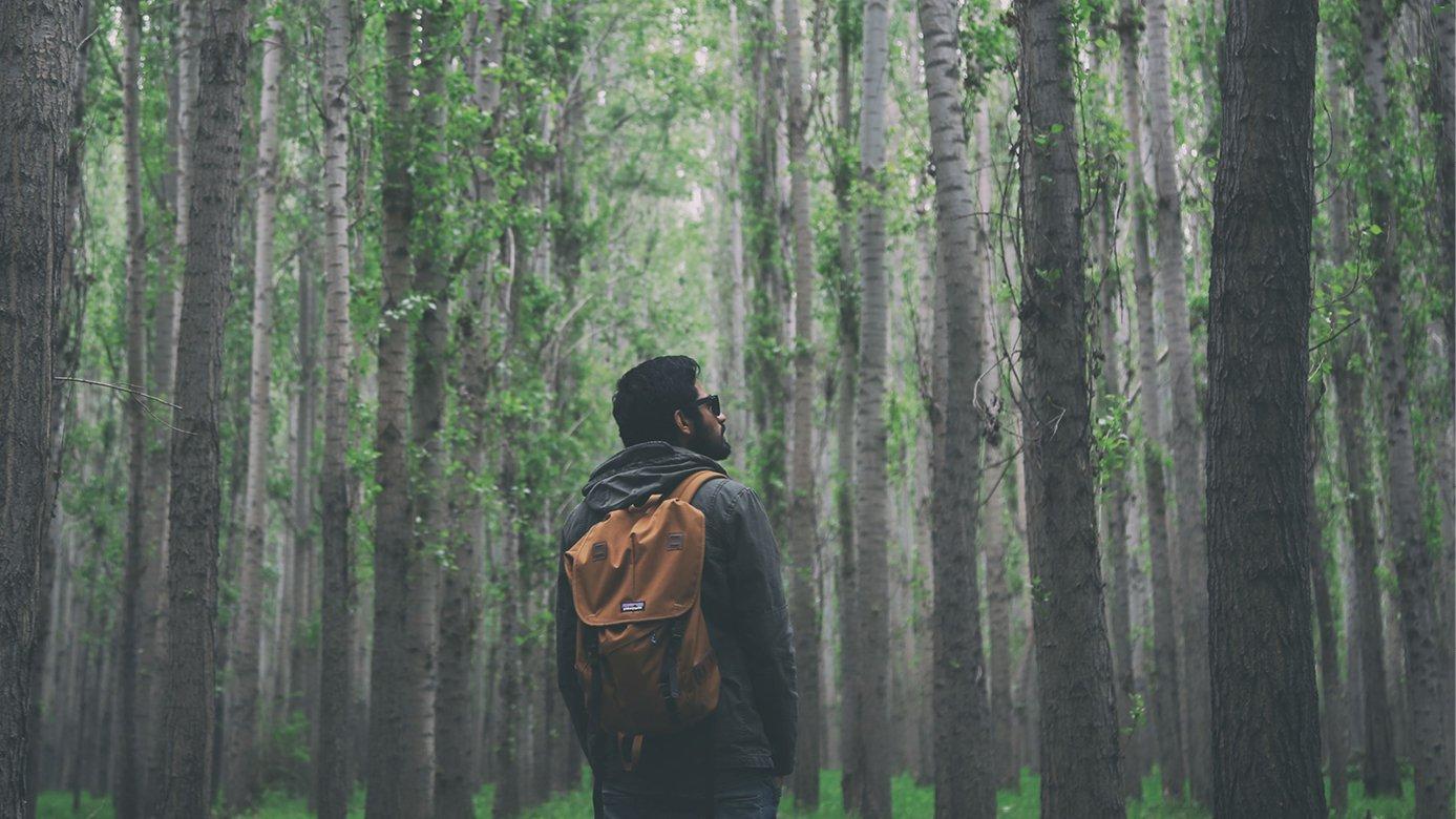 Explorer-in-forest.jpg
